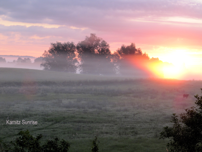 Karnitz Sunrise