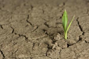 son_de_ayuda_los_aerosoles_frente_al_cambio_climatico6