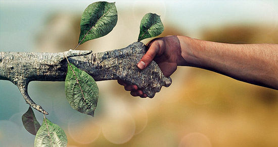 images_articulos_2015_sustentabilidad_el_rostro_social_desarrollo_sustentable.x60582